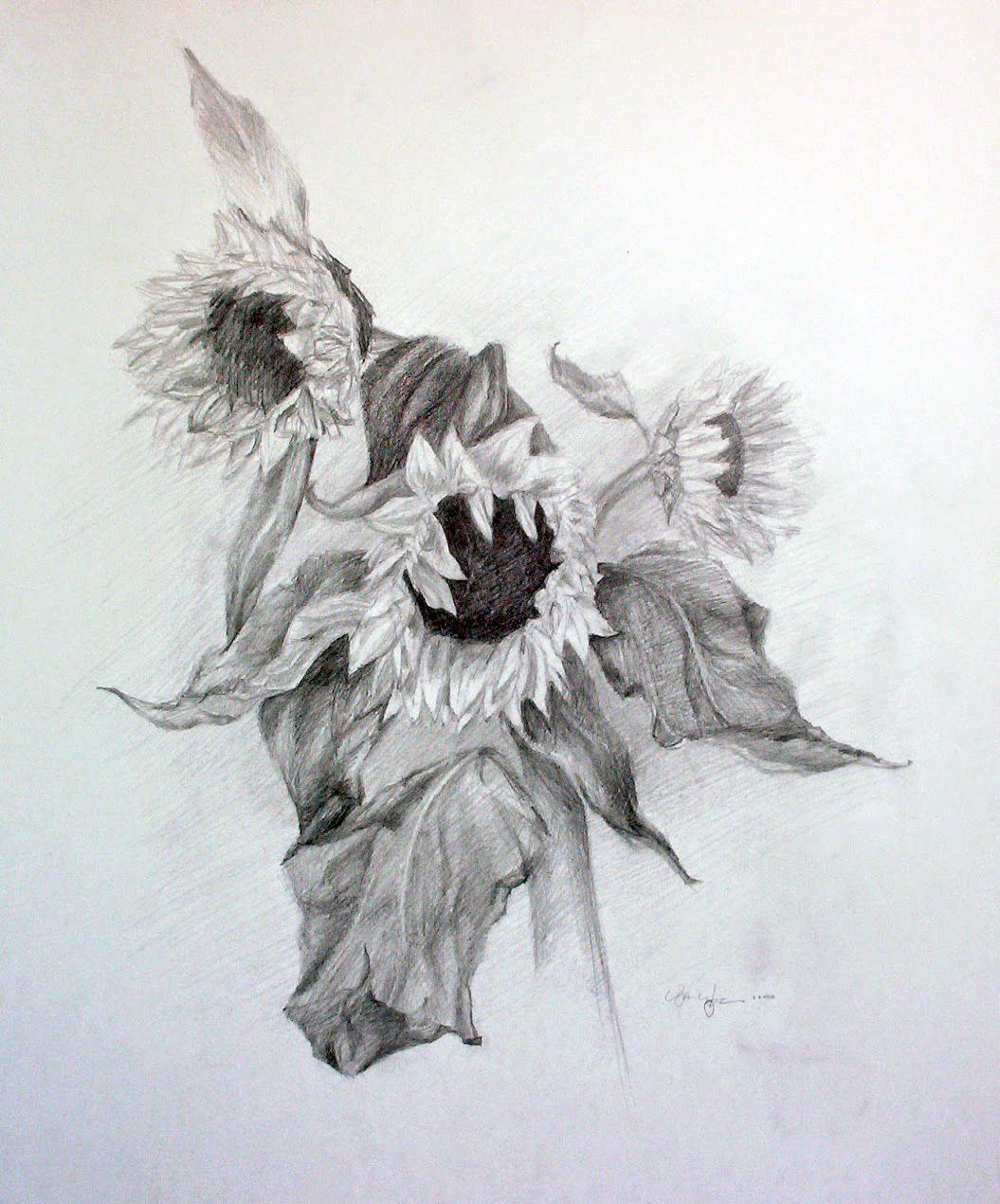 meng-he-sunflowers@2x